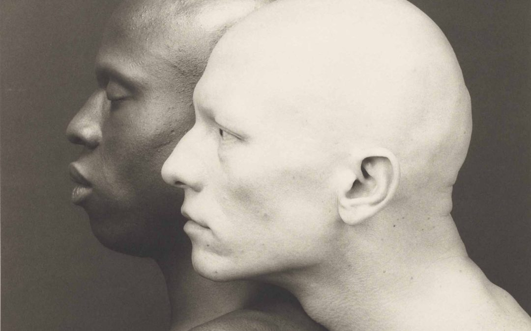 Robert Mapplethorpe. Een perfectionist