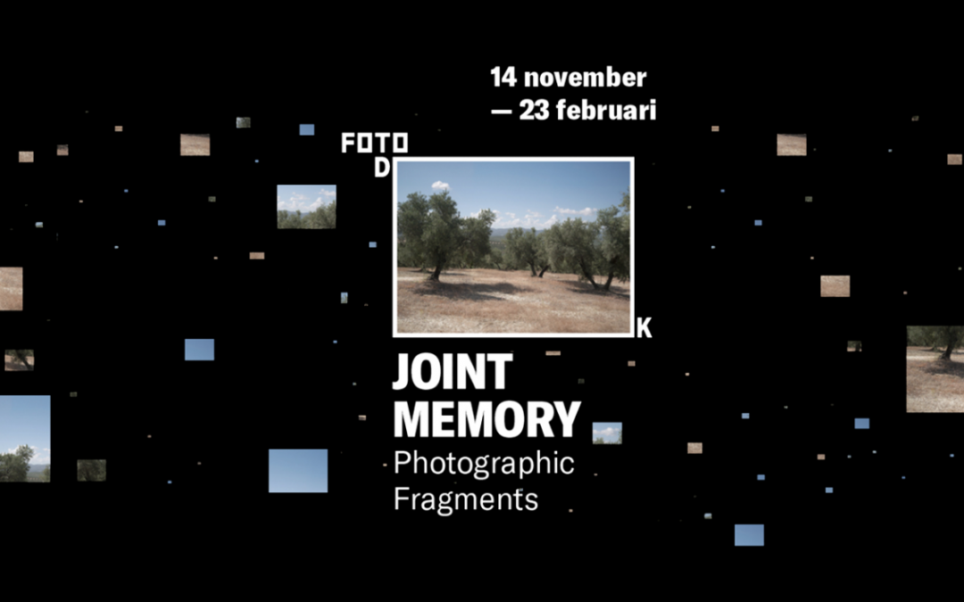 Joint Memory: Photographic Fragments