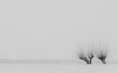 Minimalistische landschapsfotografie (26 februari 2021)